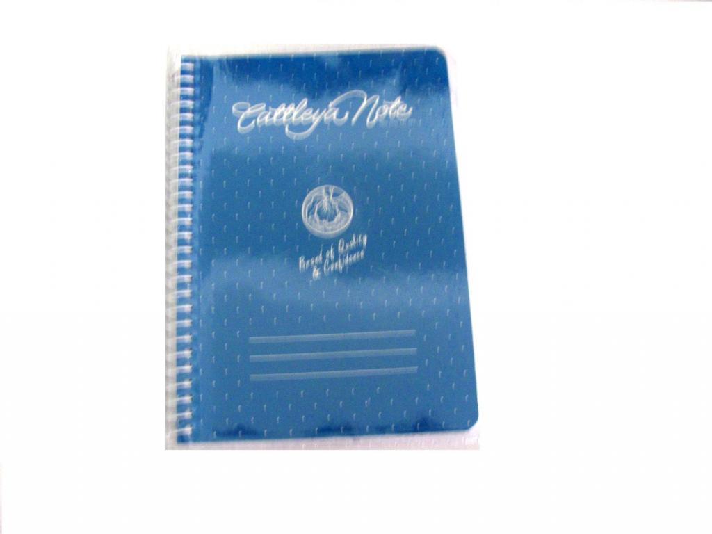 Cattleya Notebook Spiral 80s 228 Little Town School